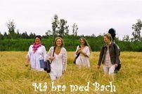 ma_bra_med_bach_vit